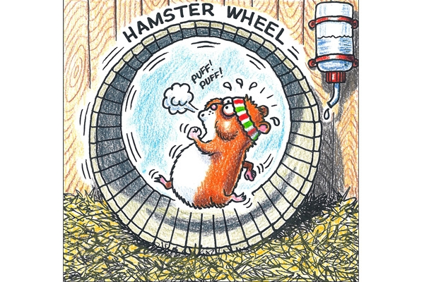 [Image: hamster-wheel-03-600.jpg]